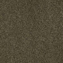 Shaw Floors Nfa/Apg Blended Trio Edford Meadow 00303_NA133