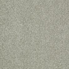 Shaw Floors Nfa/Apg Blended Trio Clear Water 00400_NA133