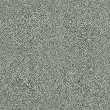 Shaw Floors Nfa/Apg Blended Trio Mediterranean 00401_NA133