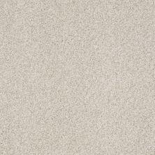 Shaw Floors Nfa/Apg Blended Trio Yorkshire 00500_NA133