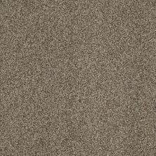 Shaw Floors Nfa/Apg Blended Trio Tibetan Plateau 00504_NA133