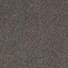 Shaw Floors Nfa/Apg Blended Trio Alaskan Musk 00506_NA133