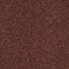 Shaw Floors Nfa/Apg Blended Trio Guanaco 00603_NA133