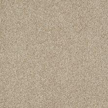 Shaw Floors Nfa/Apg Blended Trio Panama 00700_NA133