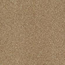 Shaw Floors Nfa/Apg Blended Trio Navajo 00703_NA133