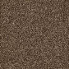 Shaw Floors Nfa/Apg Blended Trio Great Plains 00705_NA133