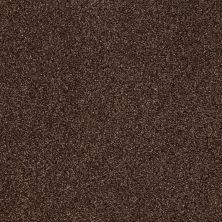 Shaw Floors Nfa/Apg Blended Trio Bison 00707_NA133