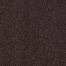 Shaw Floors Nfa/Apg Blended Trio Mountain Haze 00904_NA133