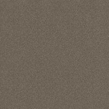 Shaw Floors Respected Mockingbird 00181_NA150