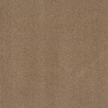 Shaw Floors Respected Burnt Ivory 00761_NA150
