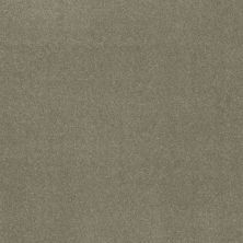 Shaw Floors Refinement Silver Sage 00360_NA151