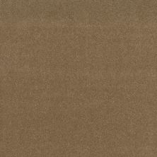 Shaw Floors Refinement Sienna 00762_NA151