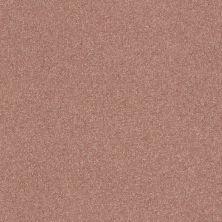 Shaw Floors Nfa Refinement Crimson Twilight 00860_NA151