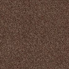 Shaw Floors Making The Rules I 12 Ocher 00600_NA152