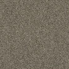 Shaw Floors Making The Rules I 15 Dynamic 00500_NA153