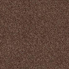 Shaw Floors Making The Rules II 12 Ocher 00600_NA154