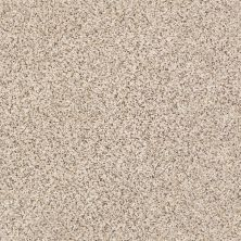 Shaw Floors Nfa/Apg Vigorous Mix I Horizon 00172_NA169