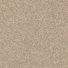 Shaw Floors Nfa/Apg Vigorous Mix I Twine 00175_NA169