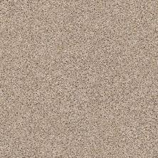 Shaw Floors Nfa/Apg Vigorous Mix I Acreage 00176_NA169