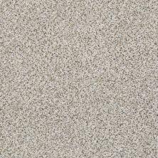 Shaw Floors Nfa/Apg Vigorous Mix I Snowbound 00178_NA169