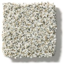 Shaw Floors Nfa/Apg Vigorous Mix I Snowbound 00178_NA169