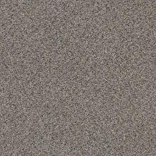 Shaw Floors Nfa/Apg Vigorous Mix I Antique Pin 00571_NA169