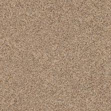 Shaw Floors Nfa/Apg Vigorous Mix I Arrowhead 00770_NA169
