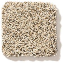 Shaw Floors Nfa/Apg Vigorous Mix II Sand Castle 00174_NA170