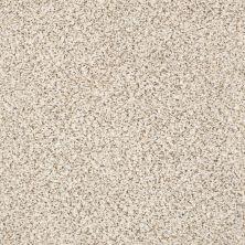 Shaw Floors Nfa/Apg Vigorous Mix III Swiss Coffee 00173_NA171
