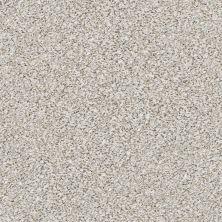 Shaw Floors Nfa/Apg Vigorous Mix III Whitewash 00177_NA171