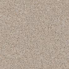 Shaw Floors Nfa/Apg Vigorous Mix III Pencil Sketch 00570_NA171