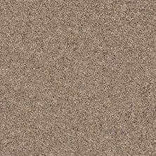 Shaw Floors Nfa/Apg Vigorous Mix III Cobble Drive 00771_NA171