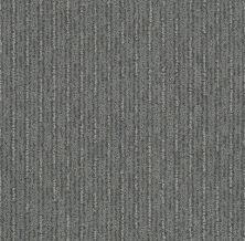 Shaw Floors Nfa/Apg Well Informed Metal 00577_NA172