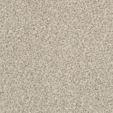 Shaw Floors Nfa/Apg Privy Cocoa Butter 00177_NA173