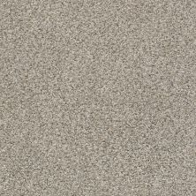 Shaw Floors Nfa/Apg Privy Cobble Stone 00573_NA173
