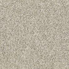 Shaw Floors Watts Up I Atlantic Sand 00102_NA206