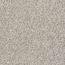 Shaw Floors Watts Up I Smoky Gray 00500_NA206