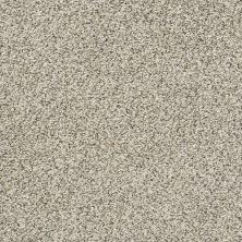 Shaw Floors Watts Up II Atlantic Sand 00102_NA207