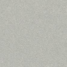 Shaw Floors Nfa/Apg Color Express I Gray Owl 00538_NA208