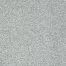 Shaw Floors Nfa/Apg Color Express I Pewter 00551_NA208