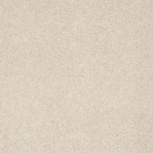 Shaw Floors Nfa/Apg Color Express II Lg Patience 00133_NA210