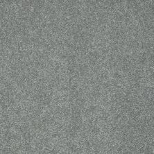 Shaw Floors Nfa/Apg Color Express II Lg Reflection 00541_NA210