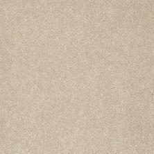 Shaw Floors Nfa/Apg Color Express II Lg Hickory 00711_NA210