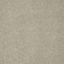 Shaw Floors Nfa/Apg Color Express II Lg Threshold 00732_NA210