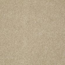 Shaw Floors Nfa/Apg Color Express II Lg Hazelnut 00750_NA210