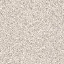 Shaw Floors Nfa/Apg Color Express Tonal I Statuary 00167_NA211