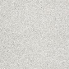 Shaw Floors Nfa/Apg Color Express Tonal II Orion 00160_NA212