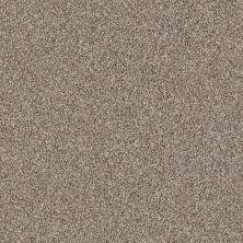 Shaw Floors Nfa/Apg Color Express Tonal II Triumph 00164_NA212