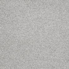 Shaw Floors Nfa/Apg Color Express Tonal II Mystic 00560_NA212