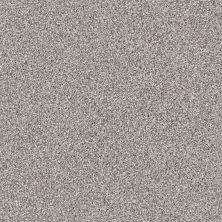 Shaw Floors Nfa/Apg Color Express Tonal II Stellar 00562_NA212